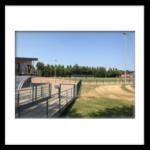 Stade Communal site MJC,  10, rue des Arts à Comines complexe B 1